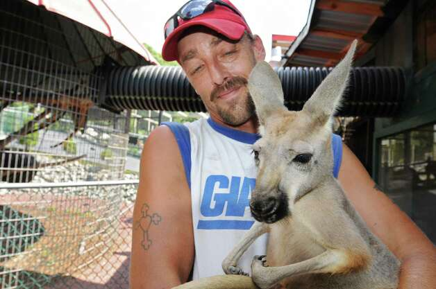 Zoo employee Richard Bain holds a Kangaroo at the Ashville Game Farm and Exotic Zoo on Tuesday, July 24, 2012 in Greenwich, N.Y. (Lori Van Buren / Times Union) Photo: Lori Van Buren