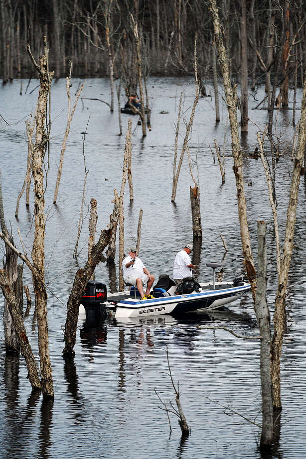 Anglers make their way carefully among trees protruding from the water on the northern arm of Lake Naconiche on opening day at the lake Saturday, Sept. 1, 2012, north of Nacogdoches, Texas. County officials conducted a lottery to draw names for the first boaters allowed on the lake, who started arriving shortly after midnight Saturday, park manager Bill Plunkett said. (AP Photo/The Daily Sentinel, Andrew D. Brosig) MANDATORY CREDIT Photo: Andrew D. Brosig, Associated Press / THE DAILY SENTINEL