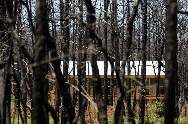 A newly-rebuilt home is seen Monday Aug. 20, 2012 through dead trees inside the Bastrop Fire Complex fire zone that burned much of Bastrop State Park and the so-called Lost Pines area of central Texas. The one year anniversary of the most destructive fire in Texas history is Sunday Sept. 4. Photo: William Luther, San Antonio Express-News / © 2012 San Antonio Express-News