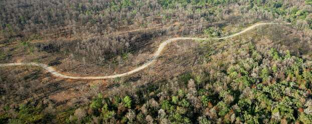 As the one-year anniversary of the The Bastrop Fire Complex fire that burned much of Bastrop State Park and the so-called Lost Pines area of central Texas approaches, the fire damaged area is seen in a Monday Aug 20, 2012 aerial image. Photo: William Luther, San Antonio Express-News / © 2012 San Antonio Express-News