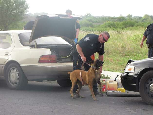 A San Antonio police canine and his handler search a gold Lexus that was involved in a slow-speed chase on the Northeast Side Sunday morning. Photo: Eva Ruth Moravec; Emoravec@express-news.net / emoravec@express-news.net