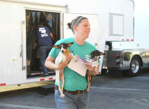 Ashley Kramer,  an employee with the Houston SPCA,  carries two dogs from the truck as members of the SPCA unload cats, dogs, puppies, kittens, and bunnies, all evacuees from the effects of Hurricane Issac, at the SPCA, Monday, Sept. 3, 2012, in Houston. Photo: Karen Warren, Houston Chronicle / © 2012  Houston Chronicle