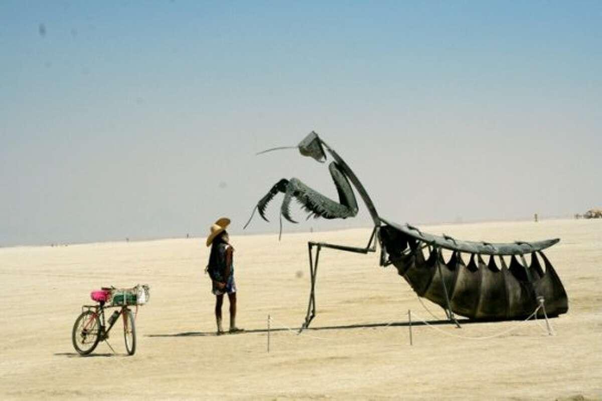 Man meets mantis. (Mark Morford / Mark Morford)