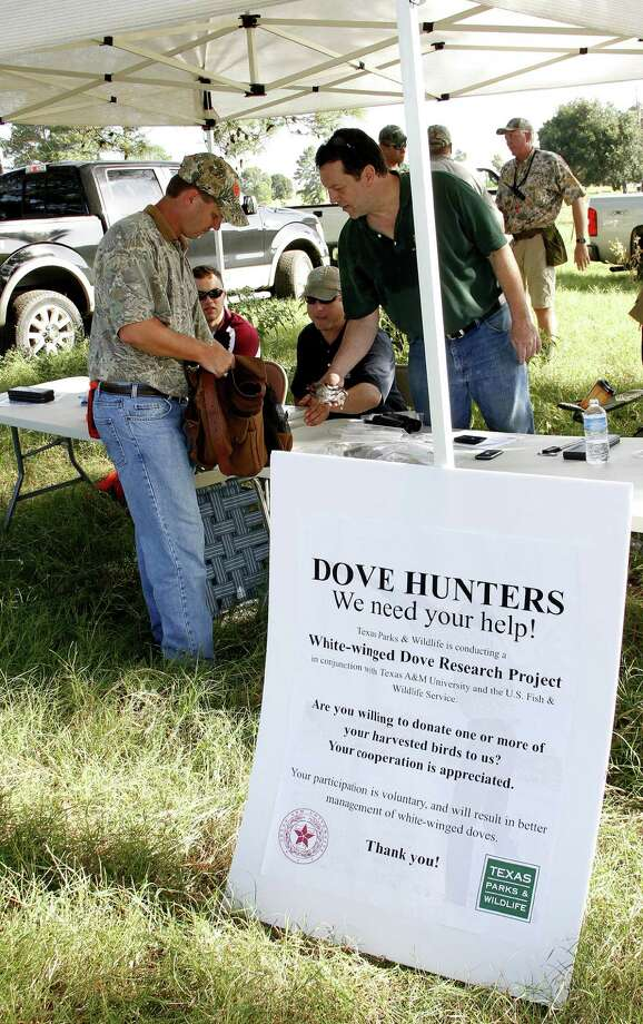Mike Frisbie accepts a hunter's donation of white-winged doves taken near Sealy as part of a cooperative research project aimed at learning more about dove population dynamics. Photo: Picasa