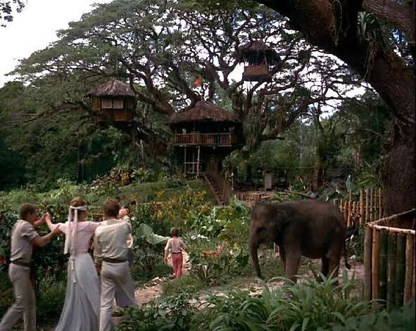 'Swiss Family Robinson' - After being shipwrecked, the Robinson family is marooned on an island inhabited only by an impressive array of wildlife. Available Sept. 1 Photo: Disney 1960