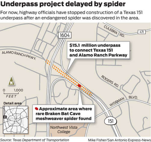 For now, highway officials have stopped construction of a Texas 151 underpass after an endangered spider was discovered in the area. Photo: Mike Fisher
