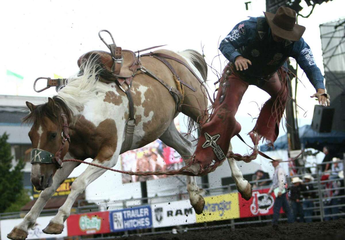 Samuel Kelts is tossed from his horse during the Puyallup Pro Rodeo on the opening day of the Puyallup Fair on Friday, September 7, 2012. The fair, one of the largest in the county, runs until September 23rd.