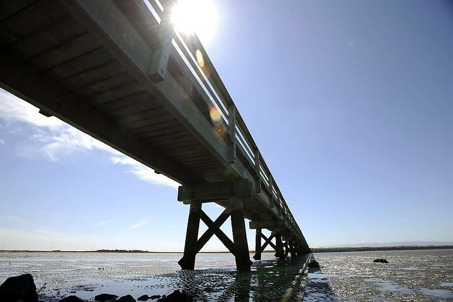 This bridge over a saltwater channel at Cogswell Marsh is the longest of the Hayward Regional Shoreline's eight bridges. Photo: Michael Short, Special To The Chronicle
