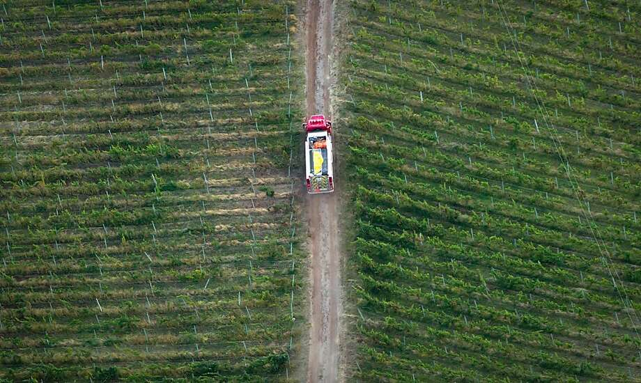 A fire truck is driven through a vineyard while battling a wildfire in Peachland, British Columbia, on Monday Sept. 10, 2012. (AP Photo/The Canadian Press, Darryl Dyck) Photo: Darryl Dyck, Associated Press