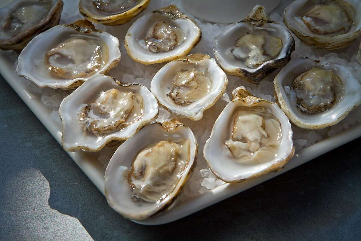 Freshly shucked Kusshi Oysters at Saltwater Oyster Depot in Inverness, Calif., are seen on Friday, September 8th, 2012.