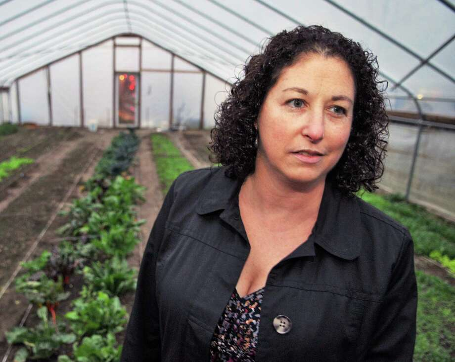 Amy Klein, executive director of the Capital District Community Gardens inside their high tunnel passive solar greenhouse on 8th Street in Troy Wednesday Dec. 7, 2011.   (John Carl D'Annibale / Times Union) Photo: John Carl D'Annibale / 10015683A