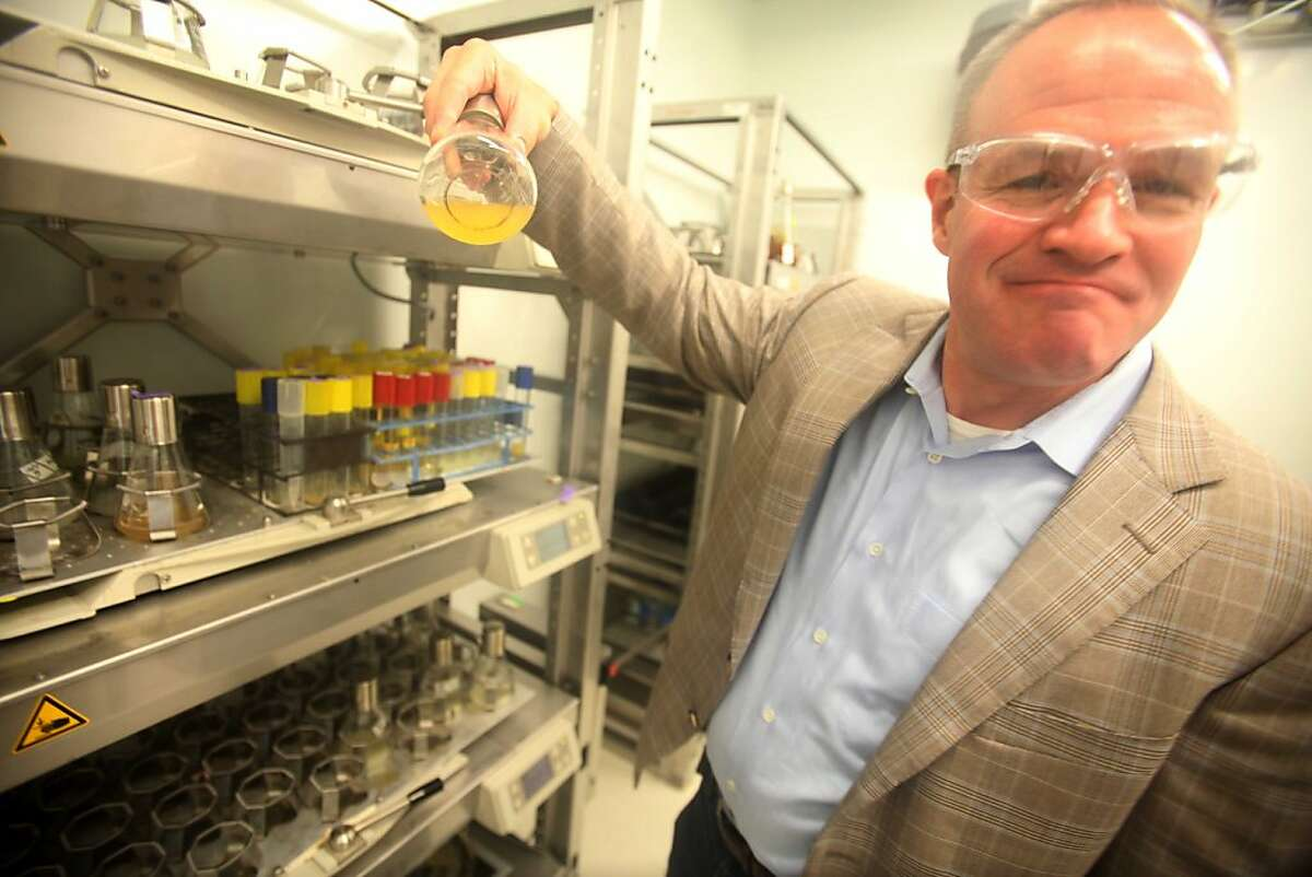 Jay Keasling, CEO and founder of the Joint BioEnergyInstitute (J BEI), shows off a flask of e coli that is producing fuel in the