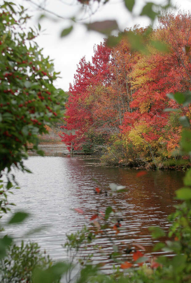 """** FOR IMMEDIATE RELEASE **Fall foliage borders the smiling pond on Cape Cod, aptly named because it's shaped like a smile, adjacent to Green Briar Nature Center and Jam Kitchen and the famous """"Briar Patch"""" of Thornton Bugess' stories, in Sandwich, Mass. Thursday, Oct. 19, 2006. (AP Photo/Vincent DeWitt) Photo: VINCENT DEWITT / AP"""