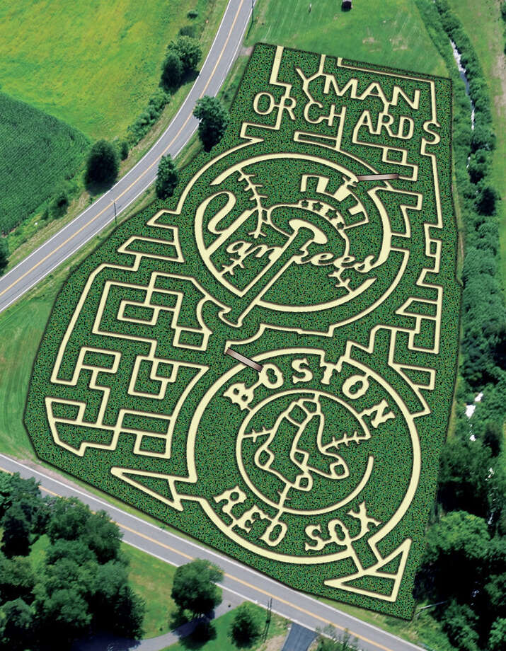 Through Nov. 4, Lyman Orchards' Baseball Days four-acre corn maze will draw visitors to Middlefield. Photo: Contributed Photo / Connecticut Post Contributed