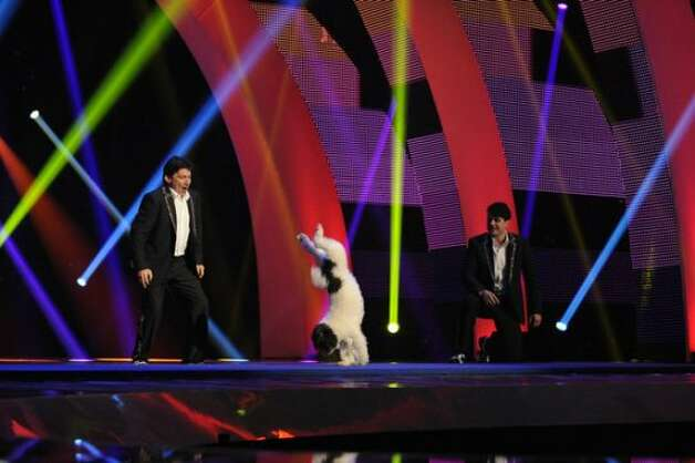 AMERICA'S GOT TALENT -- Episode 731 -- Pictured: Olate Dogs -- (Photo by: Virginia Sherwood/NBC) (NBC / Virginia Sherwood/NBC)
