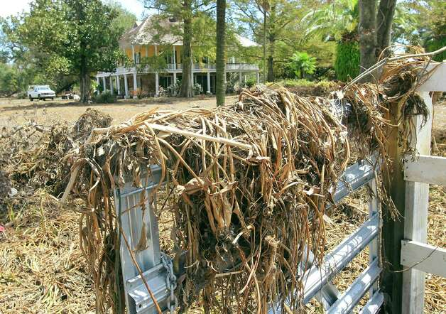 Marsh grass covers the front gate of Mary Plantation. New Orleans hotelier Blake Miller has vowed to restore Mary Plantation in Dalcour, La. to its pre- Hurricane Isaac condition and has been working clearing out the several inches of mud that 10 feet of tidal surge washed into the property. Miller purchased the property in March 2012 at an auction and had recently completed a renovation, to use the site as a venue for weddings and other events. .Mary Plantation is the oldest surviving structure in Plaquemines Parish. The house was built in 1795 and then expanded in the 1820's and features large open galleries upstairs and magnificent oak trees on the 7.5 acre property. A guest house is also located on the property. (AP Photo/The Times-Picayune, Susan Poag) Photo: Susan Poag, MBR / The Times-Picayune