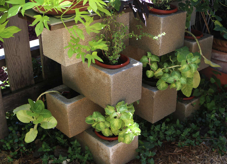 Lyn and Mike Belisle created an intersting and affordable planter  from cinder blocks. Their yard is one of nine that will be featured on the San Antonio Herb Society garden tour. Photo: John Davenport, STAFF / San Antonio Express-News