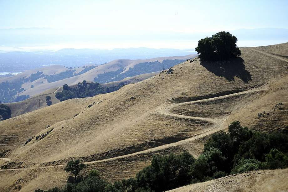 Robertson Ranch is a sprawling area of 1,368 acres between Palomares Road and Interstate 680, just north of Sunol. Photo: Michael Short, Special To The Chronicle