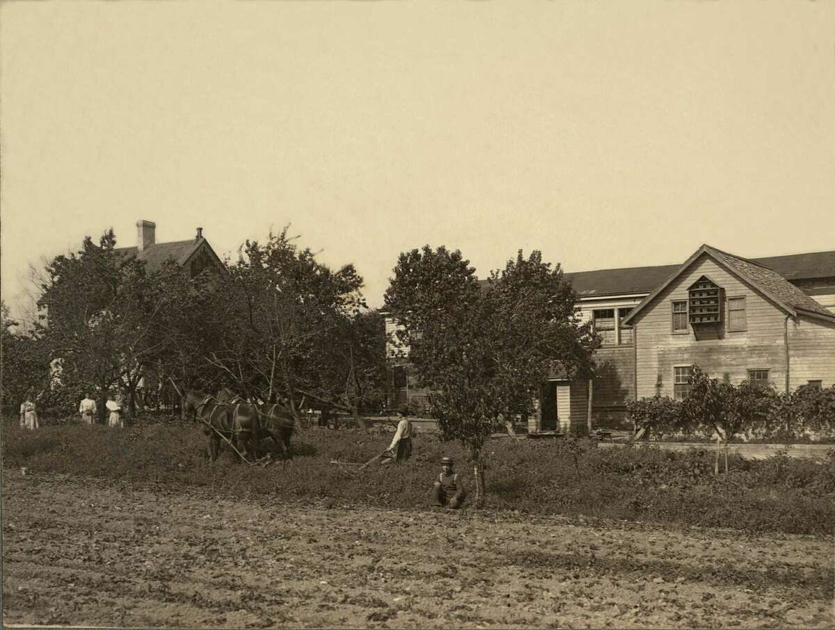 This ca.1900 vintage photo provided by the Museum of the City of New York shows the Keiber Farm in the Staten Island borough of New York. Beyond the ferry, the Verrazano-Narrows Bridge and maybe the Fresh Kills landfill, few people outside Staten Island know of its rich history as a strategic site in New York Harbor, a farming center, a recreational haven and a suburban retreat. A new exhibition aims to rectify that. Ã'Â