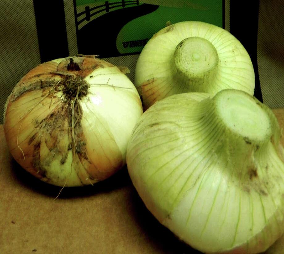 1015 Onions