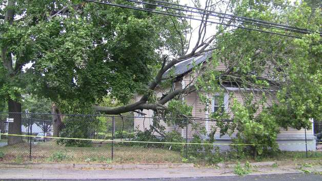 High winds Tuesday toppled a tree that crashed into the home at 2 Woodlawn Ave. in Bridgeport. Photo: Stephen Krauchick, DoingItLocal.com / Connecticut Post contributed