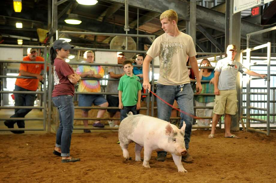 "Alex Lopez, 24, from left, center, a former Pearland High School student and a graduate of Texas A & M with a degree in Agricultural Leadership & Development, watches as Zachary Worrell, 15, a PHS sophomore, works his pig, ""Jordyn,"" during a showmanship practice session for the Pearland ISD Livestock Show at the Richard L. Wagoner Agricultural Facility in Pearland. Photo: Jerry Baker"