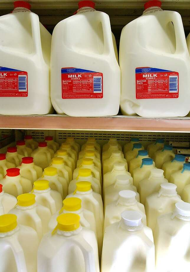 NEW YORK - AUGUST 26:  Milk sits in a refrigerated section of a grocery store August 26, 2003 in New York City. The price of milk is expected to jump nearly $1 a gallon as early as next week as the new price limit for a gallon of milk set by  the state Department of Agriculture goes to $3.60, up from $2.69.  (Photo by Stephen Chernin/Getty Images) Photo: Stephen Chernin, Getty Images
