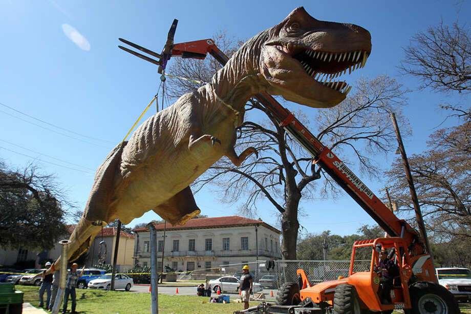 A 22 foot high animatronic Tyrannosaurus Rex made of foam rubber on a metal frame and mechanical parts was installed on the front lawn of the Witte Museum, Thursday, February 25, 2010. The traveling exhibit Dinosaurs Unearthed makes its Texas debut at the Witte Museum on March 6 and will be open through September 7.  Jennifer Whitney/ special to the Express-News