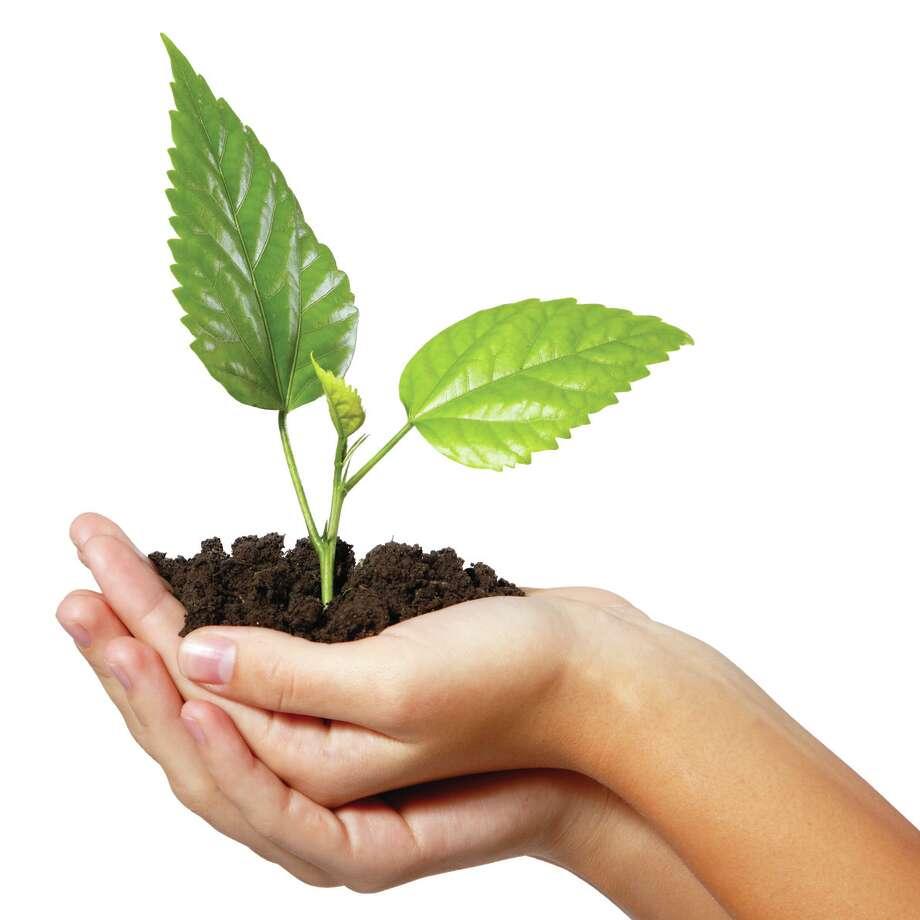 How to correct that pH level in your soil. (fotolia.com) / Khorzhevska - Fotolia