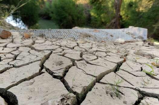 Raccoon footprints mark the dried mud by steps to be used by paddlers for entering the San Antonio River's Saspamco trail near Loop 1604. Nov. 4, 2011. Photo: Billy Calzada, San Antonio Express-News / gcalzada@express-news.net
