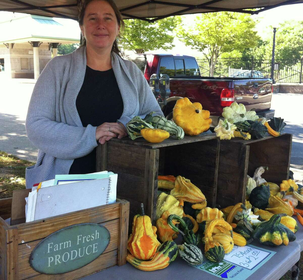 Willow Schulz, 36, of New Milford had plenty of eggplant and other fresh produce to sell Friday at the farmers market in Danbury. Although she considers herself a supporter of Chris Murphy, the Democratic candidate for U.S. Senate, she is disappointed in the campaign rhetoric between Murphy and Linda McMahon, his Republican challenger.