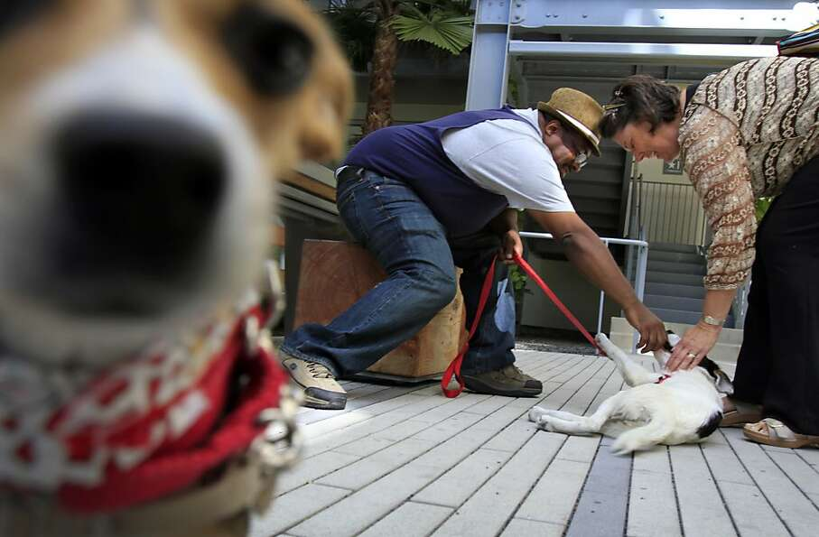 Lee Williams, left, relaxes with Dexter, the dog he fostered through WOOF, after graduating from the