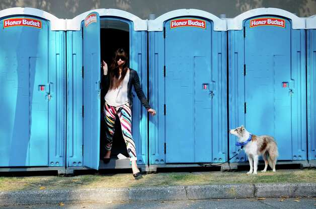 Kaya, a 2-year-old border collie, watches another woman exit a Honey Bucket as she waits for her owner, Tom Johnson. Photo: LINDSEY WASSON / SEATTLEPI.COM