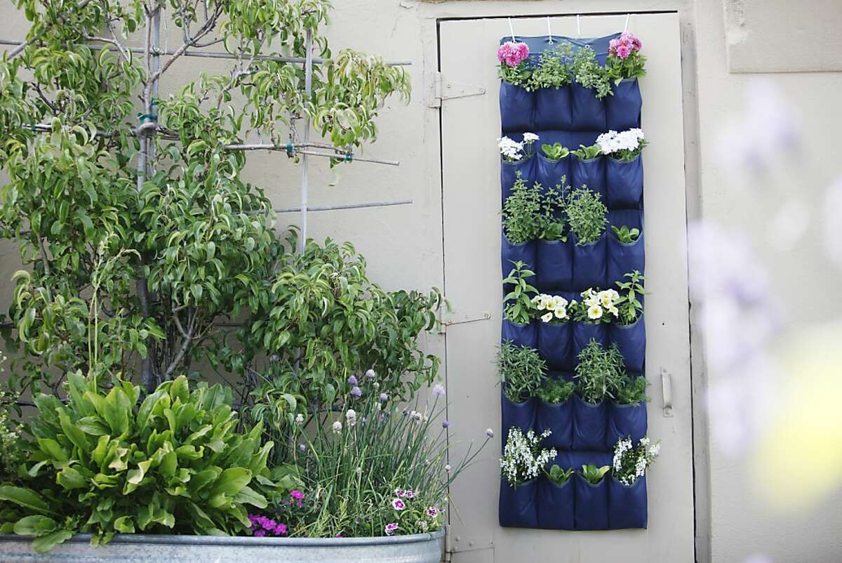 A blue shoe organizer in the Chronicle Garden in San Francisco, Calif. on Wednesday, July 25, 2012.