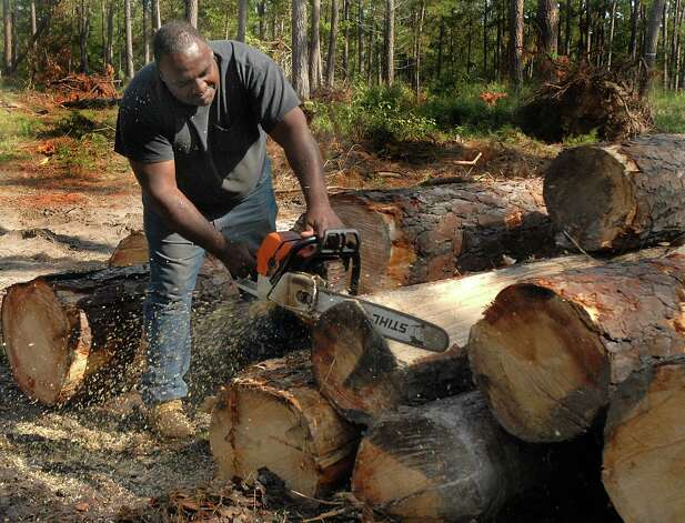 2. Logging workers are involved in fatal workplace incidents at a rate of 102.4 per 100,000 full-time workers.  Photo: David Hopper, DM / freelancer