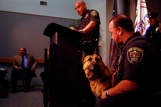 Dasty looks at Officer Mark Gonzales during the pair's retirement ceremony at San Antonio International Airport four years ago as Officer Andrew Lopez addresses the crowd. Photo: NICOLE FRUGE, SAN ANTONIO EXPRESS-NEWS / SAN ANTONIO EXPRESS-NEWS
