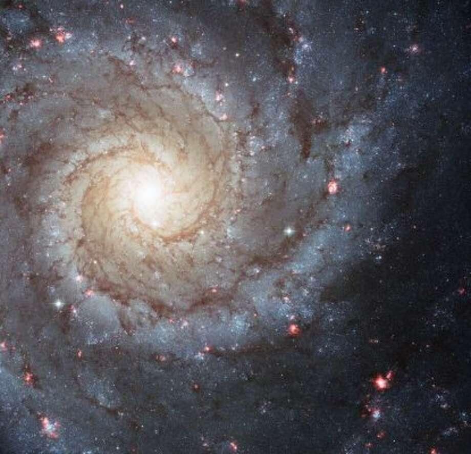 Spiral galaxy M74.
