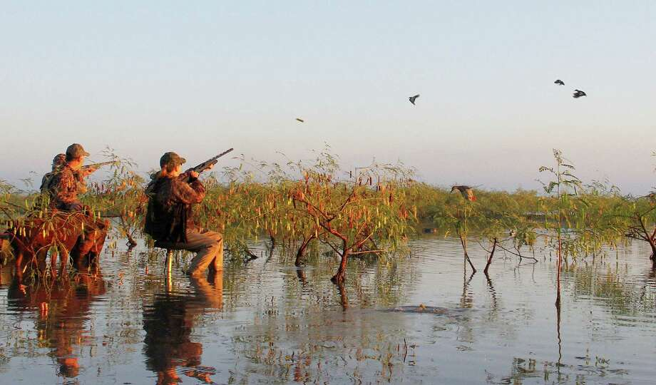 While hunting companions Rob Sawyer and Nellie, his Chesapeake Bay retriever, watch, Paul and Mary McDonald engage three of the hundreds of blue-winged teal that buzzed a managed wetland in Matagorda County this past weekend. Photo: Picasa