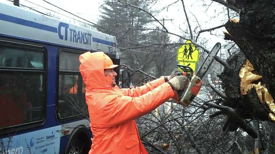 City operations crews clear a tree that fell on a CTTransit bus in front of Springdale School on Hope Street Wednesday morning. Photo: Jon Lucas, Jon Lucas/Staff Photo / Stamford Advocate