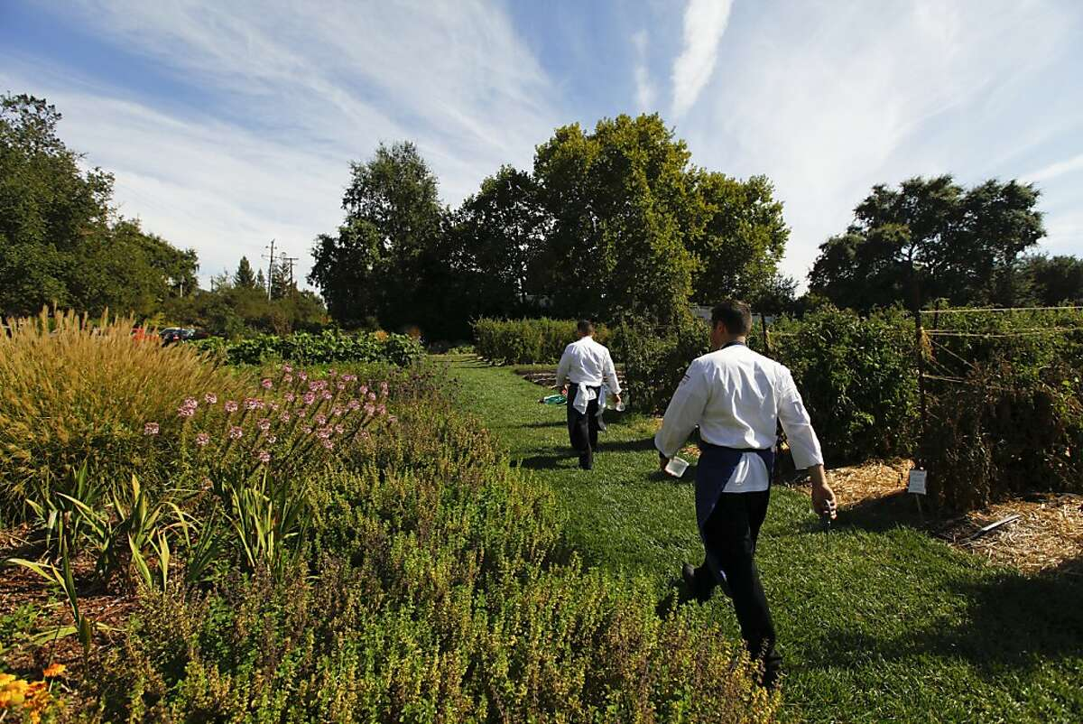 Richard Rosendale, executive chef at the Greenbrier resort in West Virginia, and his commis chef, Corey Siegel, training for the Bocue d'Or culinary competition at the French Laundry in Yountville, California, on Friday, September 21, 2012. They are walking through the garden across from the French Laundry.