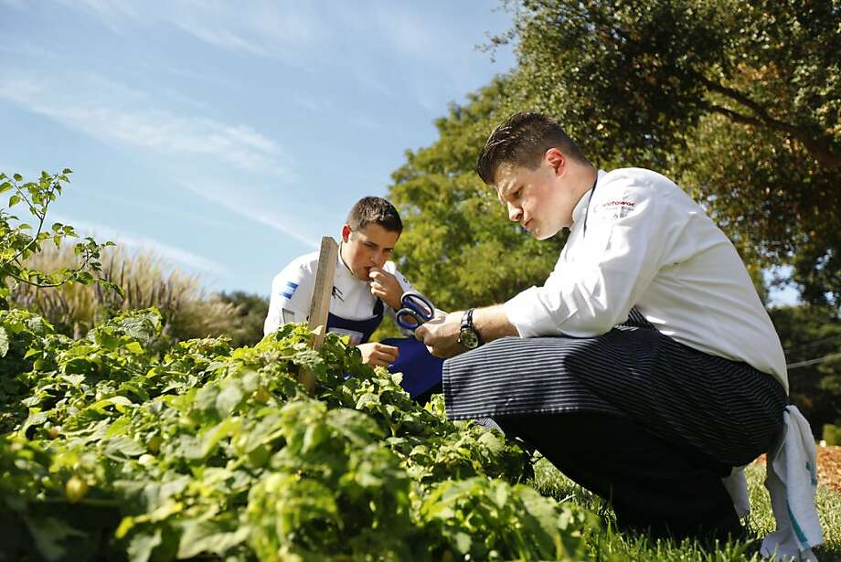 Richard Rosendale (right) and assistant Corey Siegel look for ingredients for the competition in the French Laundry garden. Photo: Craig Lee, Special To The Chronicle