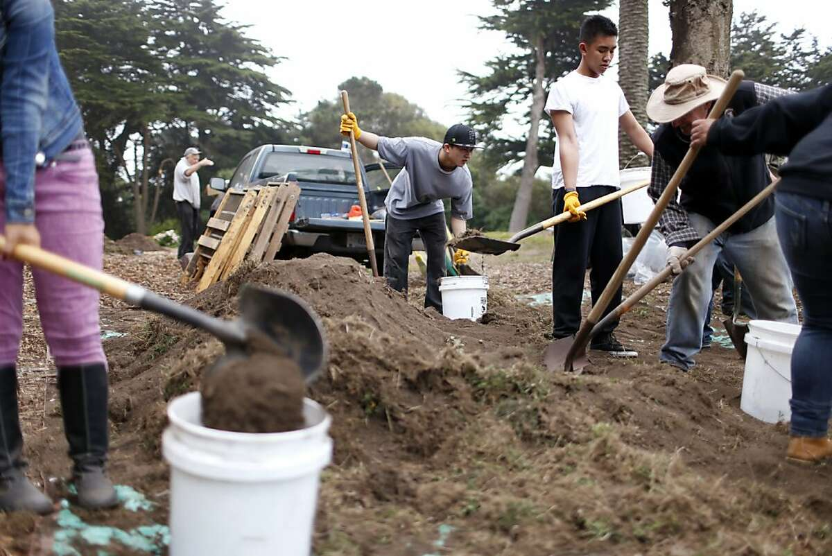 Kontion Wei, a student from Ida B. Wells continuation school, moves dirt after excavating tiles from the former conservatory in Sutro Heights Park Friday, September 28, 2012 in San Francisco, Calif.