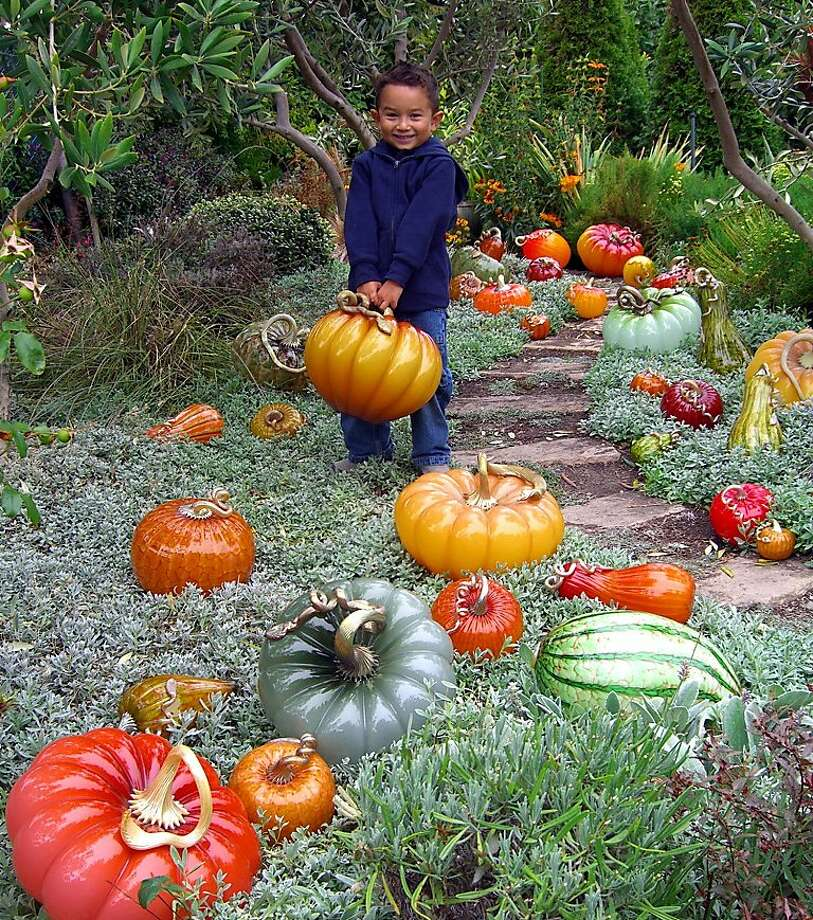 The Glass Pumpkin Patch features a crop of hundreds at Cohn-Stone Studios in Richmond. Photo: Cohn-Stone Studios