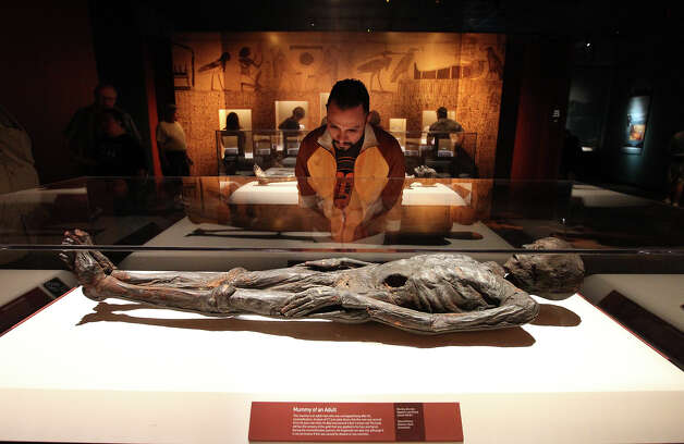 Christopher Herrera views an adult mummy at the Mummies of the World exhibit at the Witte Museum on Saturday, Sept. 29, 2012. The exhibit features 150 objects and specimens from South America, Europe, Asia, Oceania and Egypt. The exhibit will be open thru January 27, 2013. Photo: Kin Man Hui, San Antonio Express-News / ©2012 San Antonio Express-News