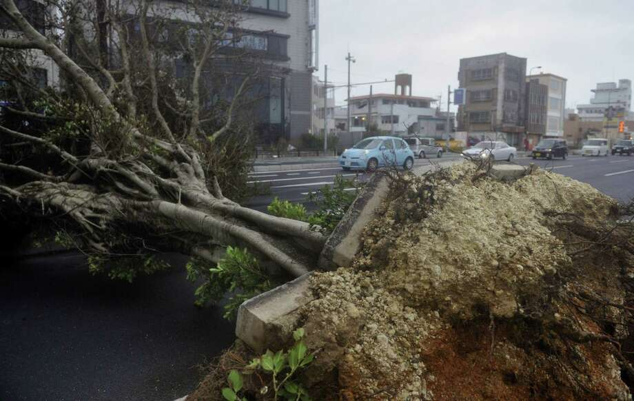 A roadside tree fallen by strong winds lies in Urasoe city as Typhoon Jelawat hit the southern Japanese prefecture of Okinawa Saturday, Sept. 29, 2012. (AP Photo/Kyodo News) JAPAN OUT, MANDATORY CREDIT, NO LICENSING IN CHINA, FRANCE, HONG KONG, JAPAN AND SOUTH KOREA Photo: Associated Press / Kyodo News