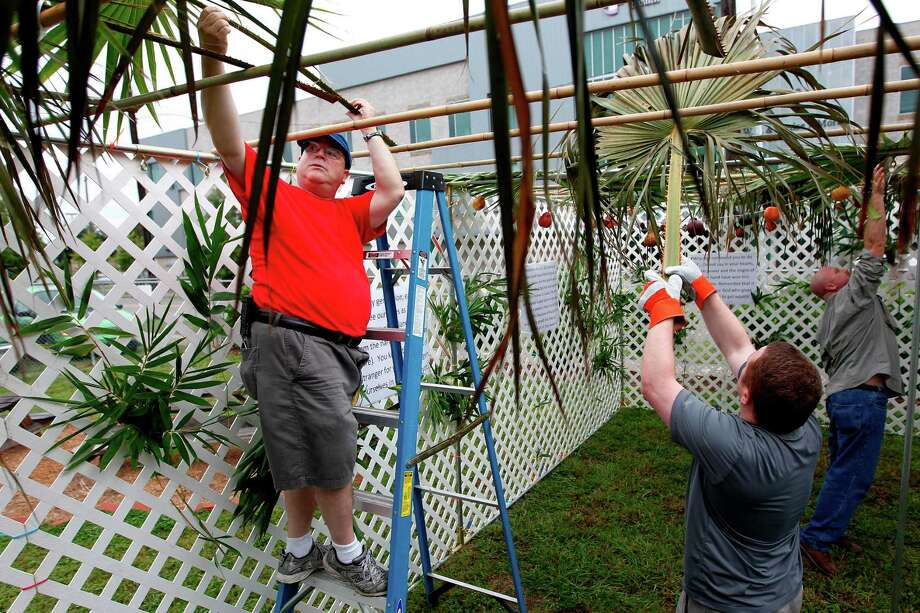 """Syd Waldman, and other members of Congregation Emanu El, place the palm branches as the roof of the 18'x20' temporary structure known as the """"Sukkah"""" on SEARCH grounds during the eight day holiday of Sukkot on Sunday, Sept. 30, 2012, in Houston. A parallel can be made between today's homeless and their struggles to find food and shelter, and Sukkot reflects the difficulties the Israelites faced wandering homeless through the Sinai Desert for 40 years. The structure is designed to resemble structures the Israelites took shelter in, and a visual reminder of their sacrifices and how humbly they lived. Photo: Mayra Beltran, Houston Chronicle / © 2012 Houston Chronicle"""