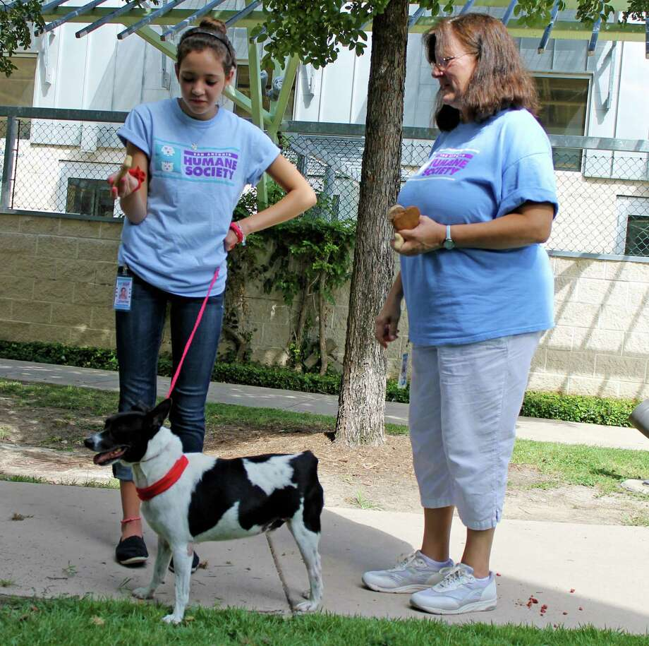 Catherine and Martha Janosko, daughter and mom, volunteer together at the San Antonio Humane Society. Photo: Andrea Yanase, San Antonio Humane Society