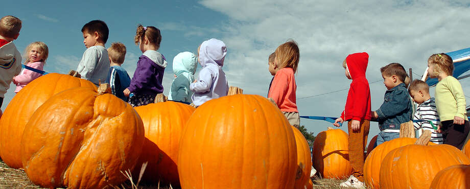 Churches get into the pumpkin patch business. Photo: JERRY LARA, . / SAN ANTONIO EXPRESS-NEWS