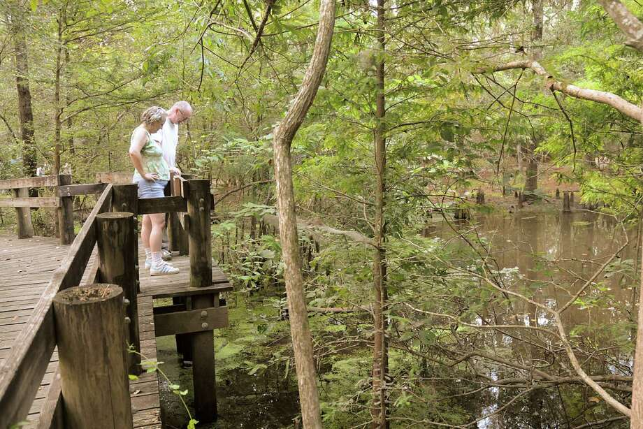 Ken and Celeste Booker, of Spring, watch turtles from the observation bridge at the turtle pond in the Jesse H. Jones Park & Nature Center, 20734 Kenswick Drive in Humble. Photo: David Hopper / freelance