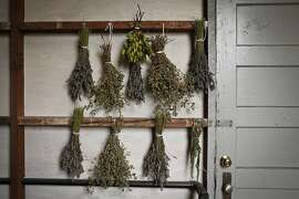 Herbs drying near the Chronicle roof garden are seen on Friday, Sep. 28, 2012 in San Francisco, Calif.
